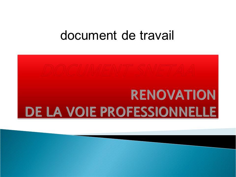 RENOVATION DE LA VOIE PROFESSIONNELLE document de travail