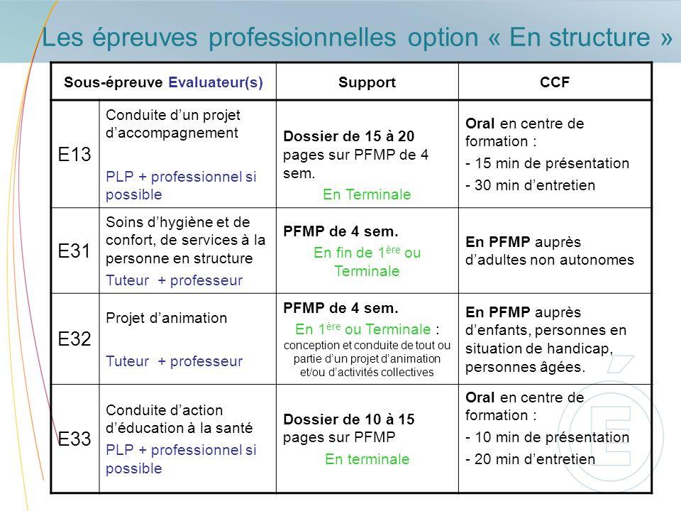Les épreuves professionnelles option « En structure » Sous-épreuve Evaluateur(s)SupportCCF E13 Conduite dun projet daccompagnement PLP + professionnel