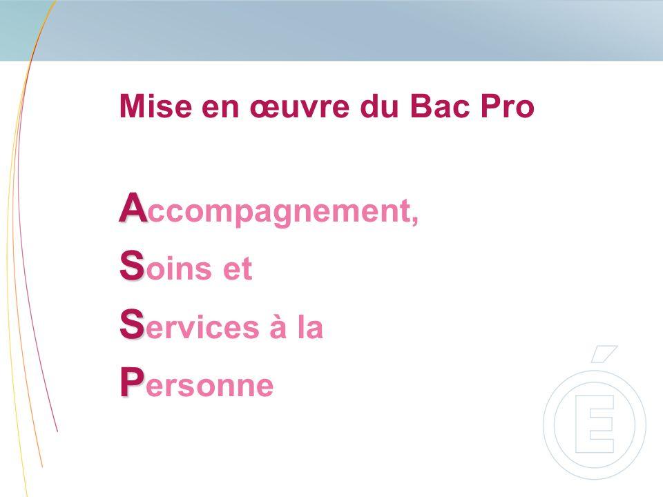 Mise en œuvre du Bac Pro A A ccompagnement, S S oins et S S ervices à la P P ersonne