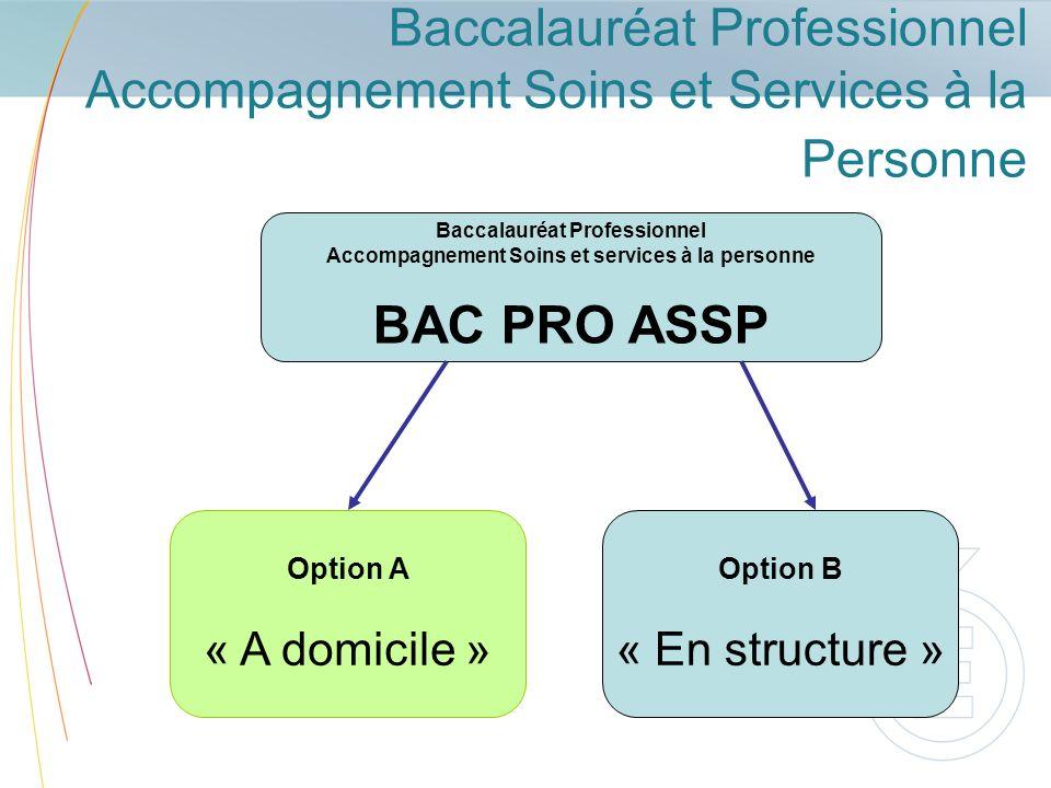 Baccalauréat Professionnel ASSP Option « A domicile » Option « à domicile » exerce ses fonctions auprès de familles, denfants, de personnes âgées, de personnes handicapées, vivant en logement privé, individuel ou collectif.