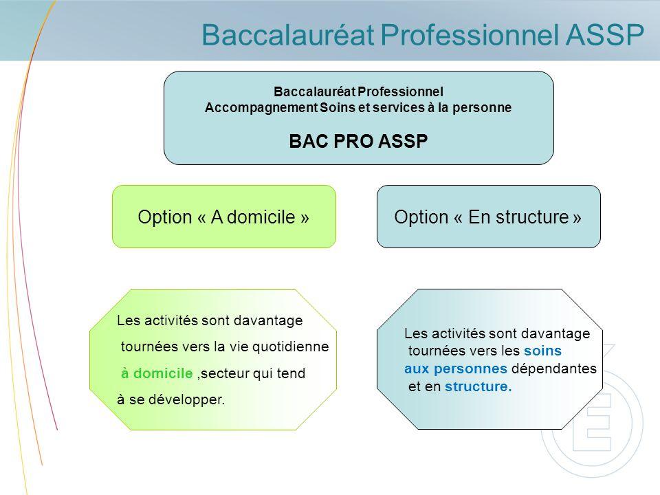 Baccalauréat Professionnel ASSP Baccalauréat Professionnel Accompagnement Soins et services à la personne BAC PRO ASSP Option « A domicile » Les activ