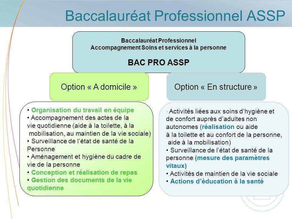 Baccalauréat Professionnel ASSP Baccalauréat Professionnel Accompagnement Soins et services à la personne BAC PRO ASSP Option « A domicile » Organisat