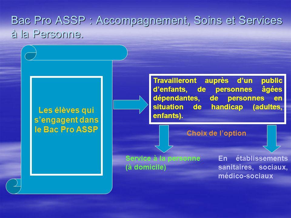 Bac Pro ASSP : Accompagnement, Soins et Services à la Personne. Travailleront auprès dun public denfants, de personnes âgées dépendantes, de personnes