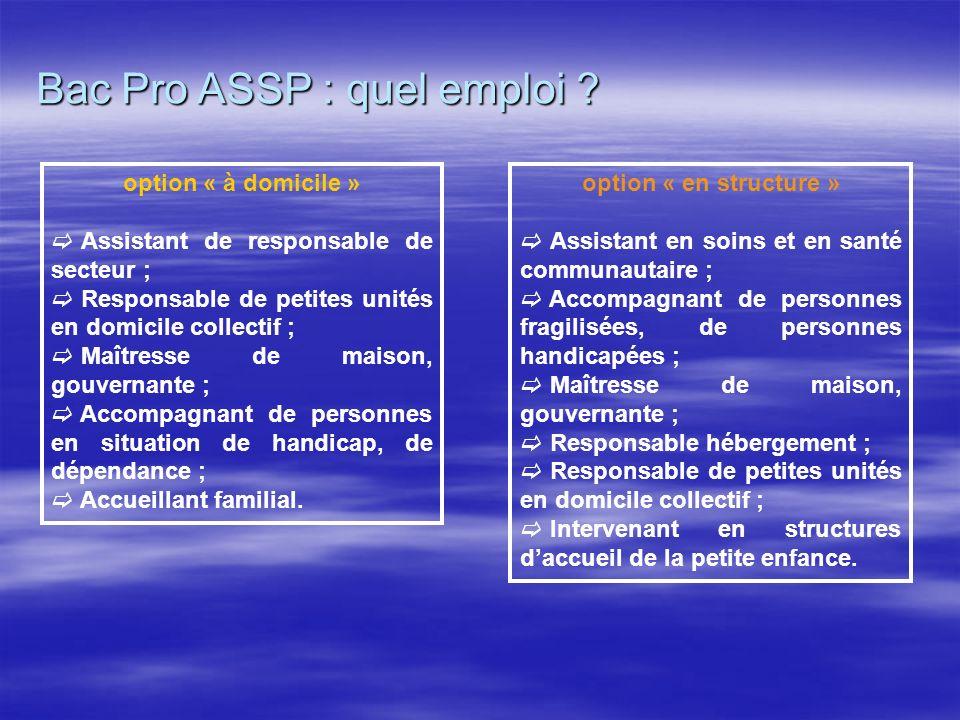 Bac Pro ASSP : quel emploi ? option « à domicile » Assistant de responsable de secteur ; Responsable de petites unités en domicile collectif ; Maîtres