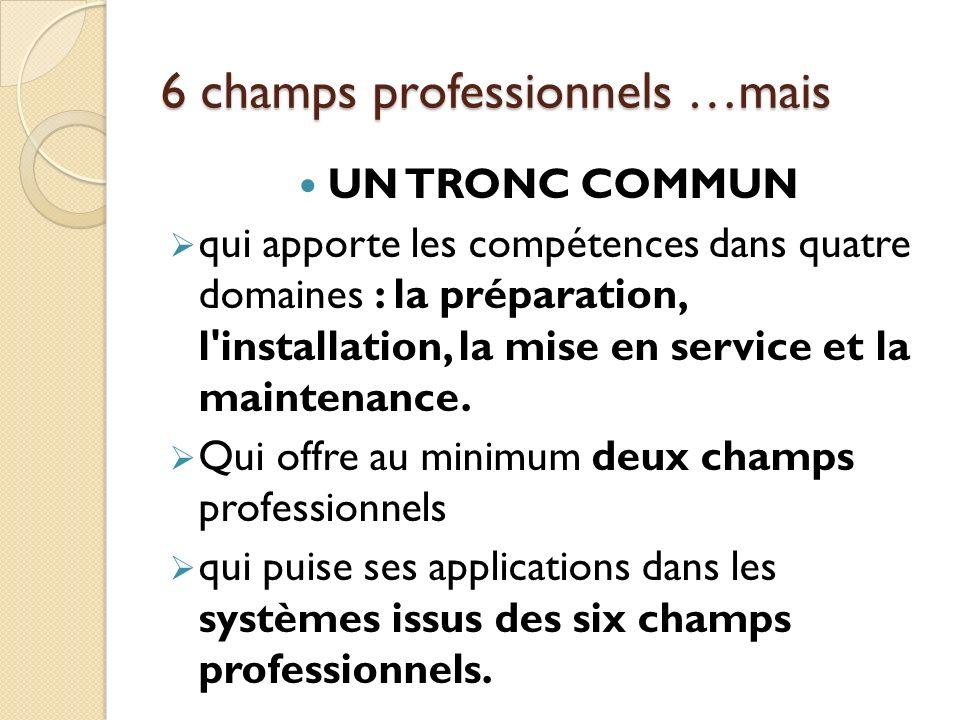 6 champs professionnels …mais UN TRONC COMMUN qui apporte les compétences dans quatre domaines : la préparation, l'installation, la mise en service et
