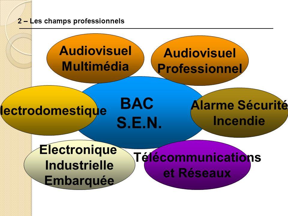 2 – Les champs professionnels BAC S.E.N. Audiovisuel Professionnel Alarme Sécurité Incendie Electrodomestique Télécommunications et Réseaux Electroniq