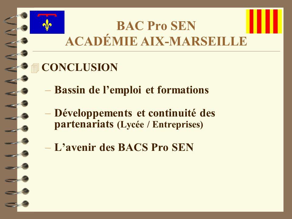 4 CONCLUSION –Bassin de lemploi et formations –Développements et continuité des partenariats (Lycée / Entreprises) –Lavenir des BACS Pro SEN