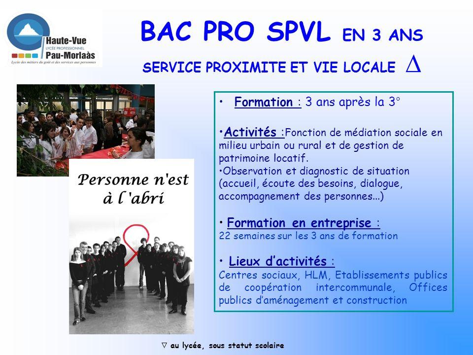 BAC PRO 3 ans Boucher Charcutier-Traiteur Activités : Préparations fines en charcuterie, pâtisserie, boulangerie, boucherie et poissonnerie. Gestion d