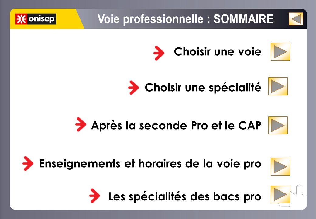 Choisir une voie Choisir une spécialité Après la seconde Pro et le CAP Enseignements et horaires de la voie pro La voie professionnelle rénovée. Chois