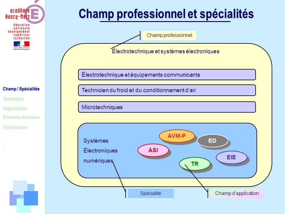 Champ / Spécialités Orientation Organisation Éléments directeurs. Grille horaire Champ professionnel et spécialités Champ / Spécialités Électrotechniq