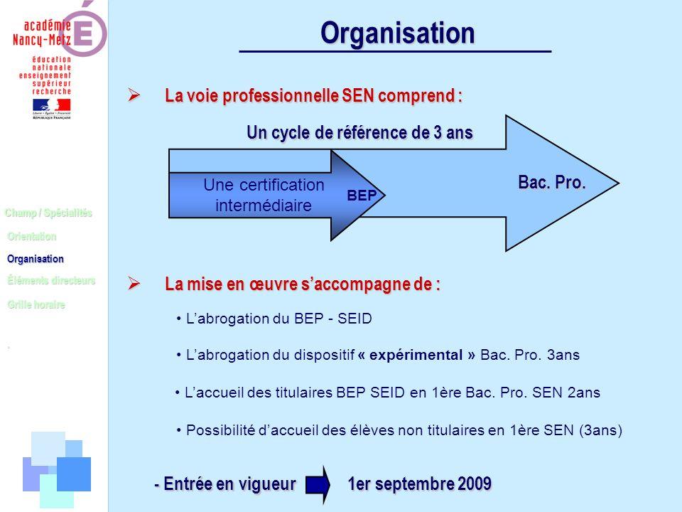 Champ / Spécialités Orientation Organisation Éléments directeurs. Grille horaire Organisation - Entrée en vigueur 1er septembre 2009 Organisation La m