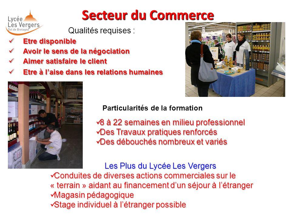 Secteur du Commerce Qualités requises : Etre disponible Etre disponible Avoir le sens de la négociation Avoir le sens de la négociation Aimer satisfai