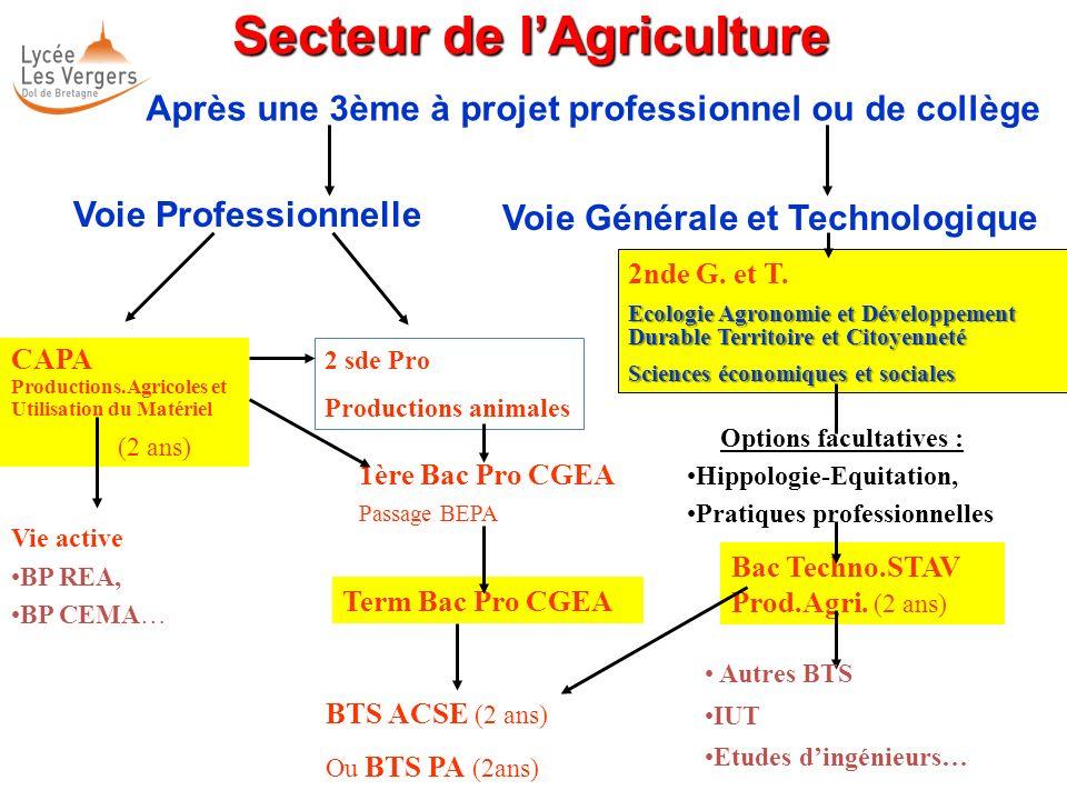 Secteur de lAgriculture Secteur de lAgriculture Après une 3ème à projet professionnel ou de collège CAPA Productions.Agricoles et Utilisation du Matér