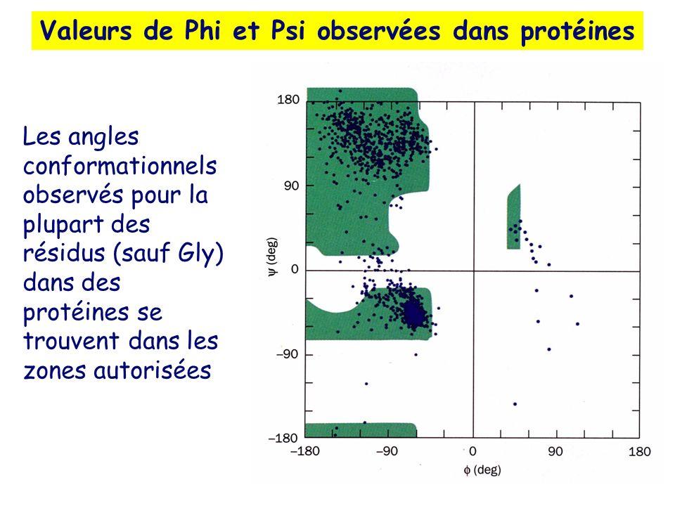 Valeurs de Phi et Psi observées dans protéines Les angles conformationnels observés pour la plupart des résidus (sauf Gly) dans des protéines se trouv
