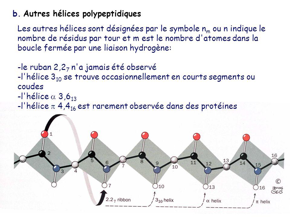 b. Autres hélices polypeptidiques Les autres hélices sont désignées par le symbole n m ou n indique le nombre de résidus par tour et m est le nombre d
