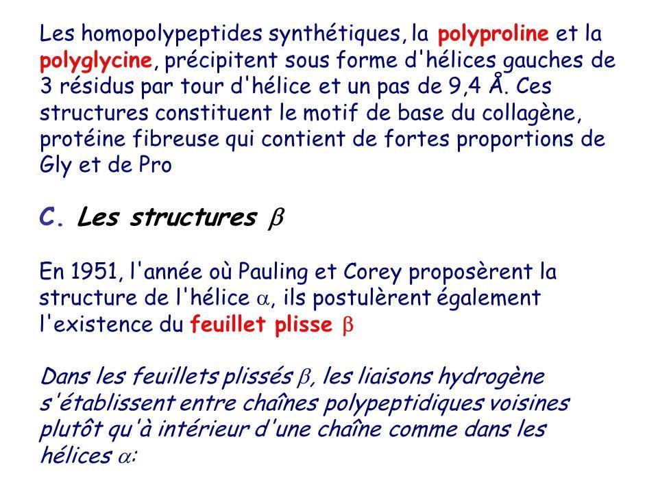 Les homopolypeptides synthétiques, la polyproline et la polyglycine, précipitent sous forme d'hélices gauches de 3 résidus par tour d'hélice et un pas