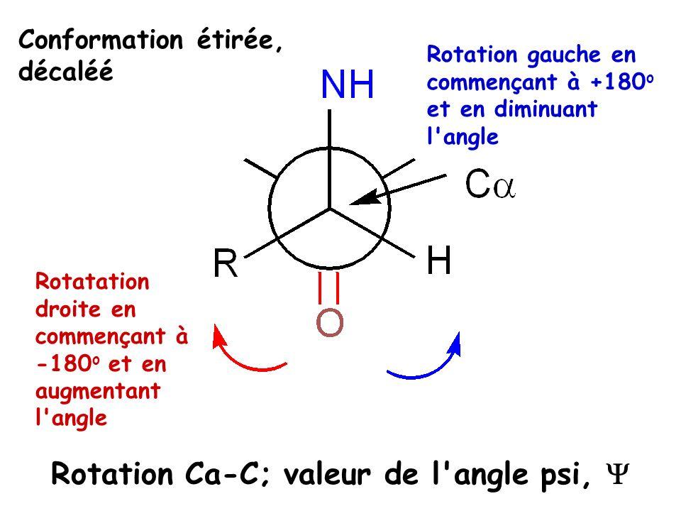 Rotatation droite en commençant à -180 o et en augmentant l'angle Rotation gauche en commençant à +180 o et en diminuant l'angle Rotation Ca-C; valeur