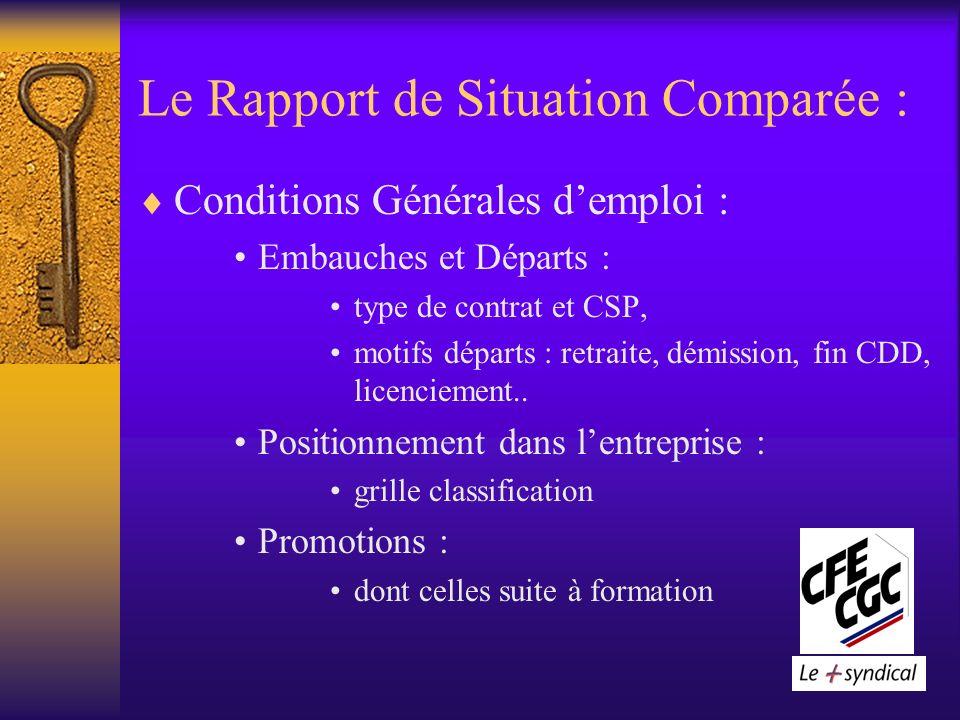 Le Rapport de Situation Comparée : Conditions Générales demploi : Embauches et Départs : type de contrat et CSP, motifs départs : retraite, démission, fin CDD, licenciement..
