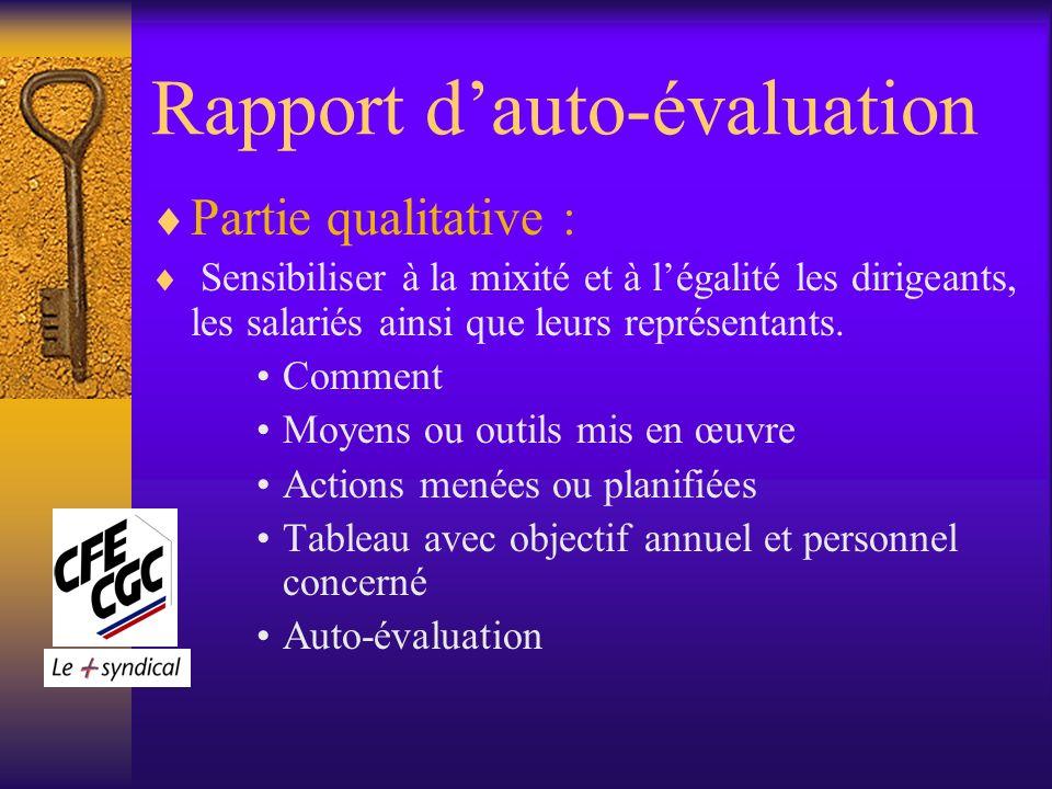 Rapport dauto-évaluation Partie qualitative : Sensibiliser à la mixité et à légalité les dirigeants, les salariés ainsi que leurs représentants.