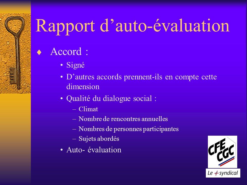 Rapport dauto-évaluation Accord : Signé Dautres accords prennent-ils en compte cette dimension Qualité du dialogue social : –Climat –Nombre de rencontres annuelles –Nombres de personnes participantes –Sujets abordés Auto- évaluation