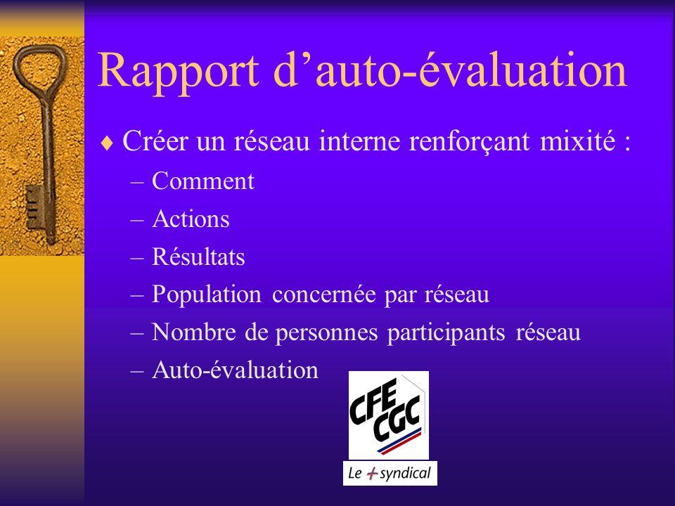 Rapport dauto-évaluation Créer un réseau interne renforçant mixité : –Comment –Actions –Résultats –Population concernée par réseau –Nombre de personnes participants réseau –Auto-évaluation