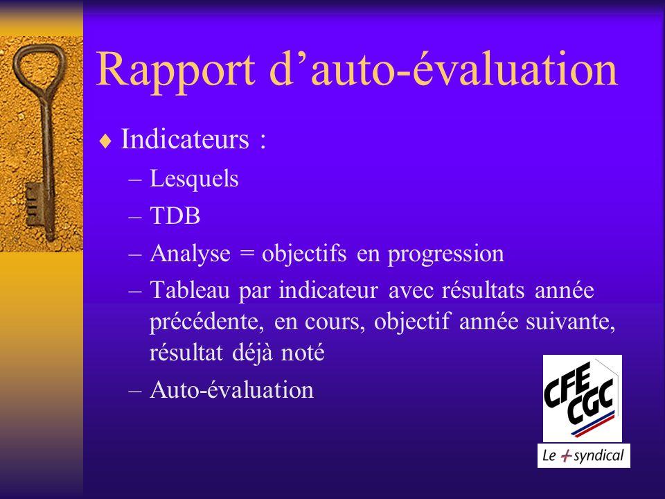 Rapport dauto-évaluation Indicateurs : –Lesquels –TDB –Analyse = objectifs en progression –Tableau par indicateur avec résultats année précédente, en cours, objectif année suivante, résultat déjà noté –Auto-évaluation