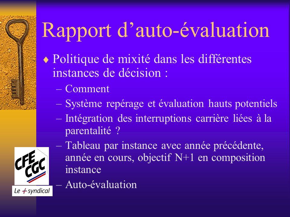 Rapport dauto-évaluation Politique de mixité dans les différentes instances de décision : –Comment –Système repérage et évaluation hauts potentiels –Intégration des interruptions carrière liées à la parentalité .