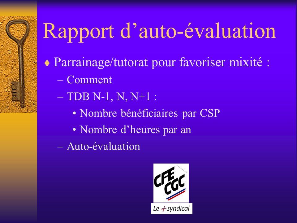 Rapport dauto-évaluation Parrainage/tutorat pour favoriser mixité : –Comment –TDB N-1, N, N+1 : Nombre bénéficiaires par CSP Nombre dheures par an –Auto-évaluation