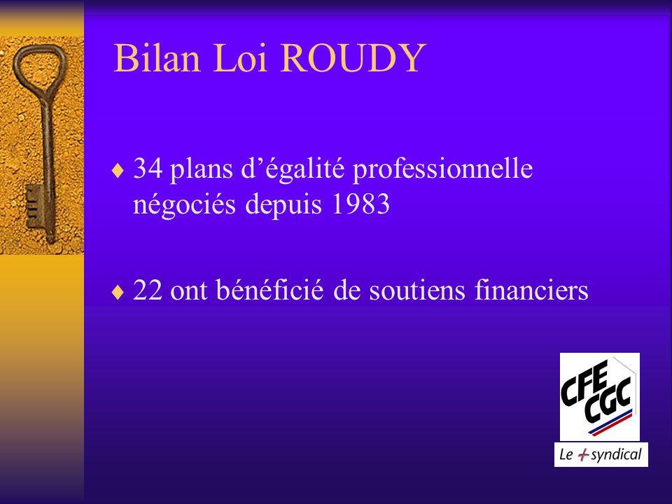 Bilan Loi ROUDY 34 plans dégalité professionnelle négociés depuis 1983 22 ont bénéficié de soutiens financiers