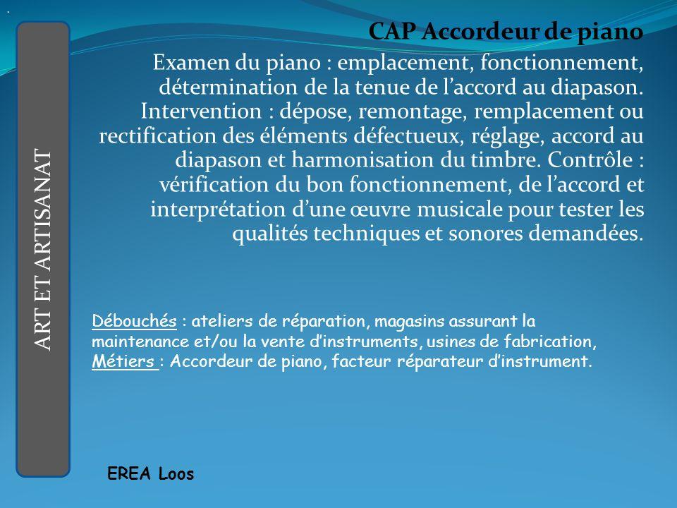 CAP Accordeur de piano Examen du piano : emplacement, fonctionnement, détermination de la tenue de laccord au diapason.