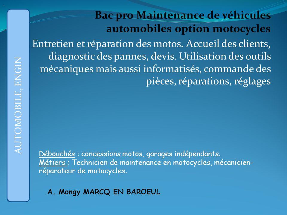 Bac pro Maintenance de véhicules automobiles option motocycles Entretien et réparation des motos.