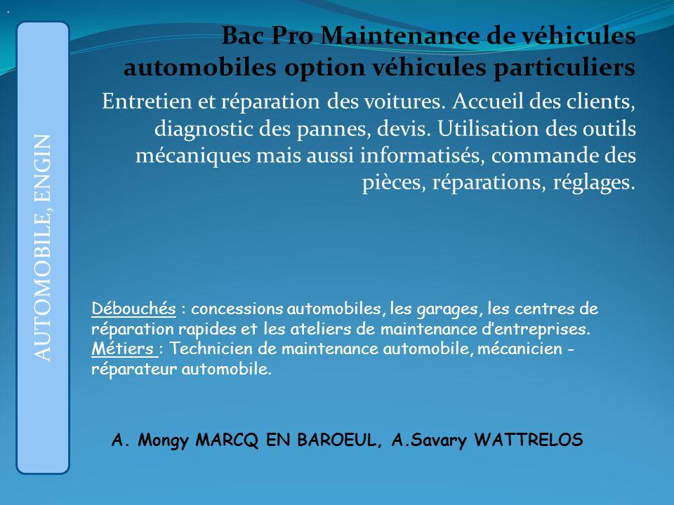 Bac Pro Maintenance de véhicules automobiles option véhicules particuliers Entretien et réparation des voitures.