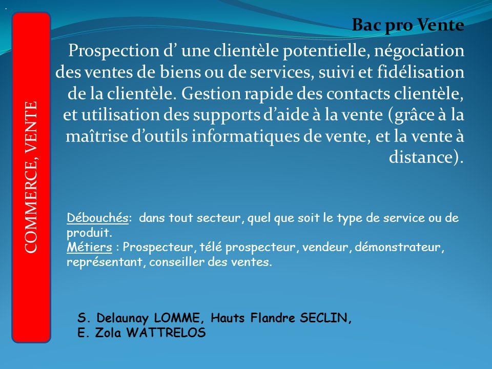 Bac pro Vente Prospection d une clientèle potentielle, négociation des ventes de biens ou de services, suivi et fidélisation de la clientèle.