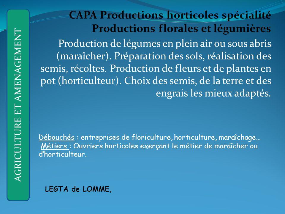 CAPA Productions horticoles spécialité Productions florales et légumières Production de légumes en plein air ou sous abris (maraîcher).