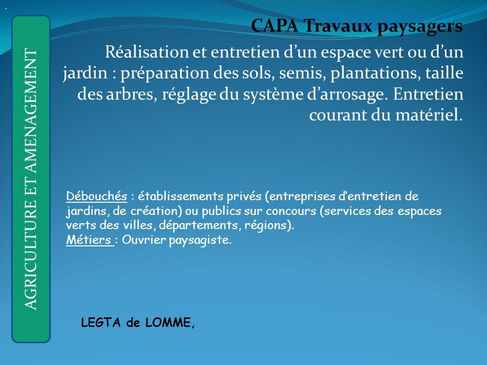 CAPA Travaux paysagers Réalisation et entretien dun espace vert ou dun jardin : préparation des sols, semis, plantations, taille des arbres, réglage du système darrosage.