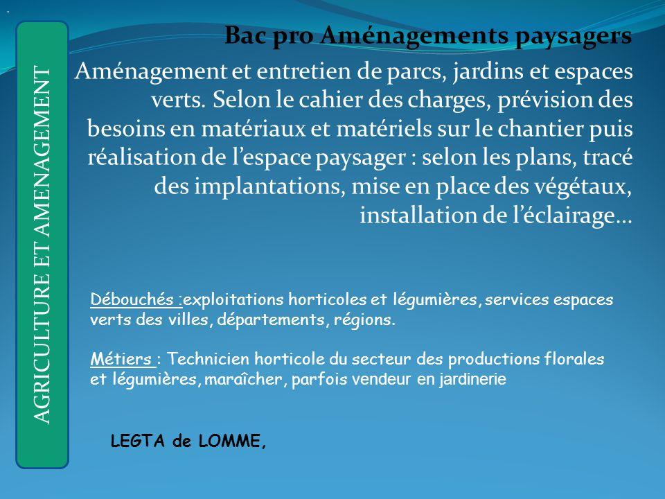 Bac pro Aménagements paysagers Aménagement et entretien de parcs, jardins et espaces verts.