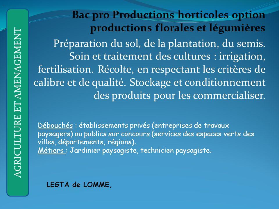 Bac pro Productions horticoles option productions florales et légumières Préparation du sol, de la plantation, du semis.