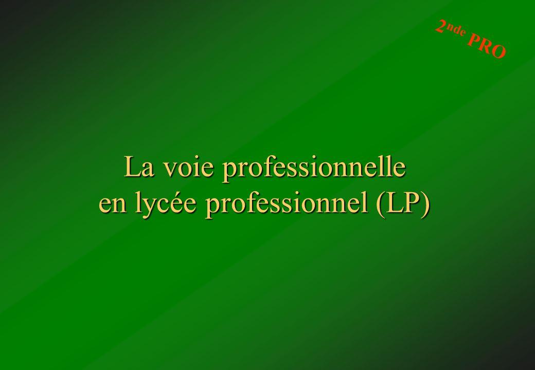 La voie professionnelle en lycée professionnel (LP) 2 nde PRO
