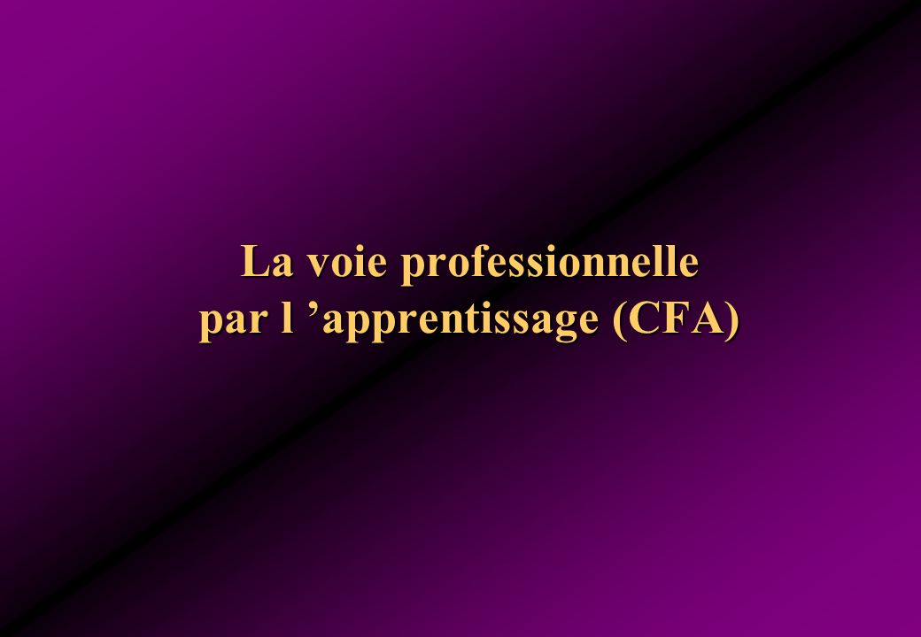 La voie professionnelle par l apprentissage (CFA)