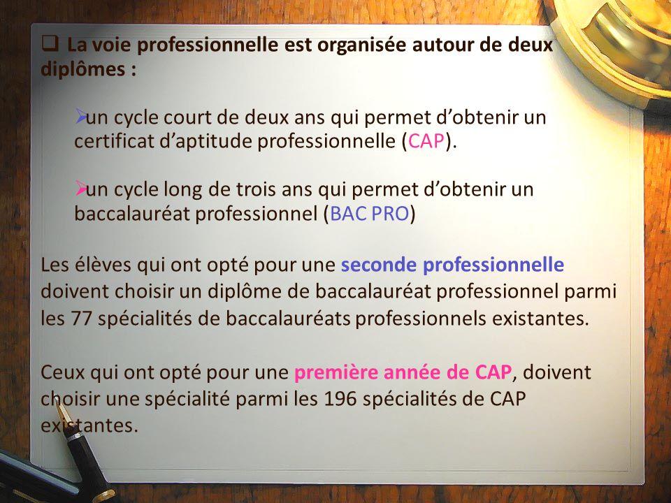 La voie professionnelle est organisée autour de deux diplômes : un cycle court de deux ans qui permet dobtenir un certificat daptitude professionnelle