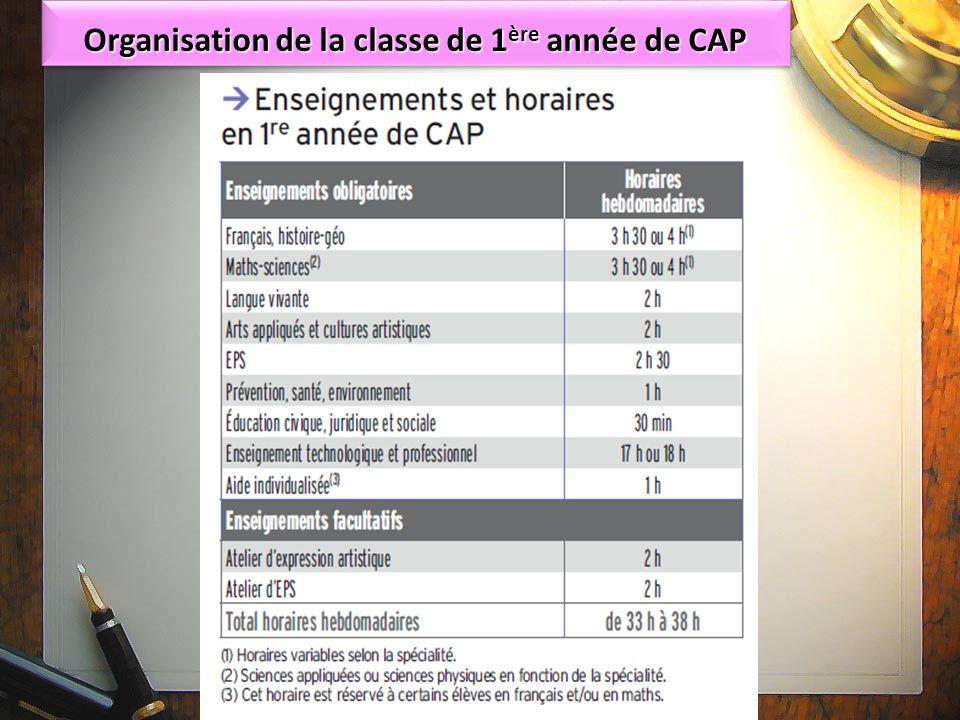 Organisation de la classe de 1 ère année de CAP