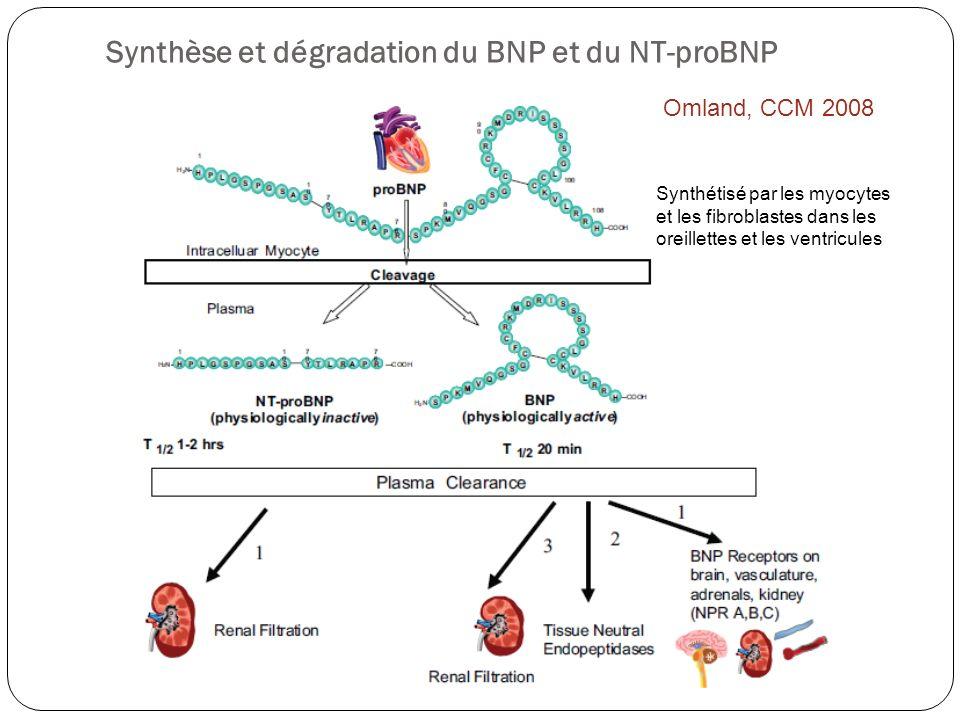Synthèse et dégradation du BNP et du NT-proBNP Synthétisé par les myocytes et les fibroblastes dans les oreillettes et les ventricules Omland, CCM 200