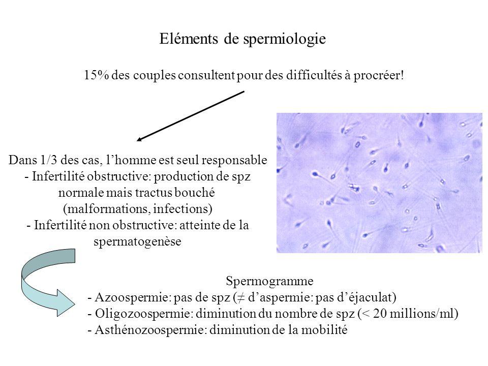 Eléments de spermiologie 15% des couples consultent pour des difficultés à procréer! Dans 1/3 des cas, lhomme est seul responsable - Infertilité obstr
