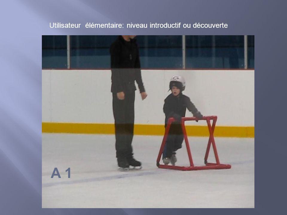 A 1 Utilisateur élémentaire: niveau introductif ou découverte