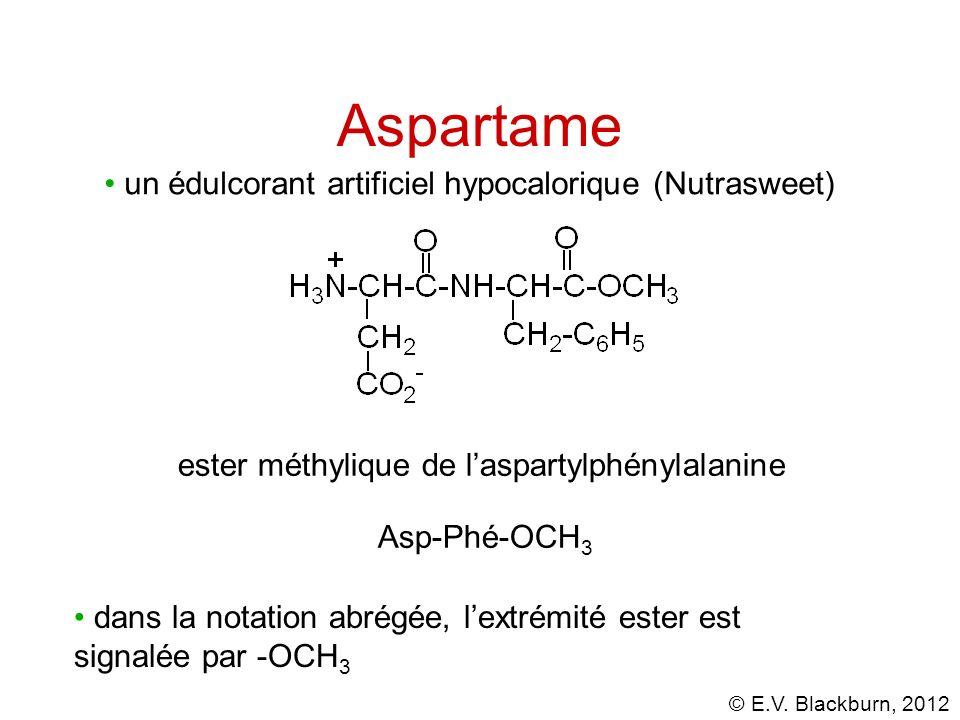 © E.V. Blackburn, 2012 Aspartame un édulcorant artificiel hypocalorique (Nutrasweet) ester méthylique de laspartylphénylalanine Asp-Phé-OCH 3 dans la