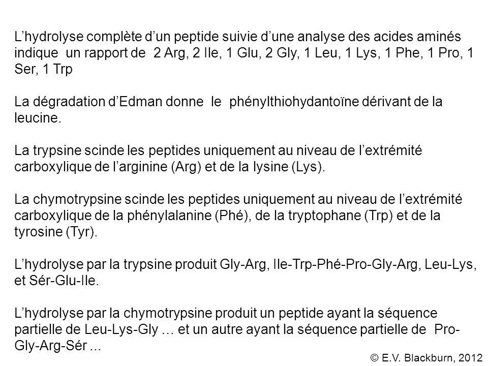 © E.V. Blackburn, 2012 Lhydrolyse complète dun peptide suivie dune analyse des acides aminés indique un rapport de 2 Arg, 2 Ile, 1 Glu, 2 Gly, 1 Leu,