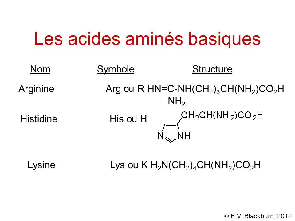 © E.V. Blackburn, 2012 Arginine Arg ou R HN=C-NH(CH 2 ) 3 CH(NH 2 )CO 2 H NH 2 Les acides aminés basiques Nom Symbole Structure Histidine His ou H Lys