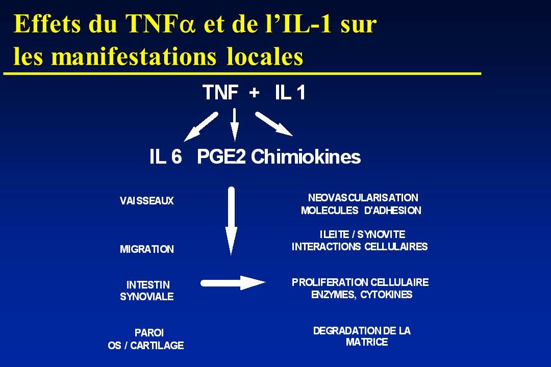 Effets du TNF et de lIL-1 sur les manifestations locales