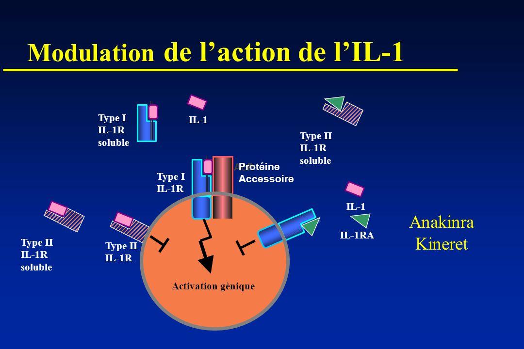 Modulation de laction de lIL-1 AcP Protéine Accessoire IL-1 IL-1RA Type I IL-1R Type II IL-1R Type I IL-1R soluble Type II IL-1R soluble Type II IL-1R