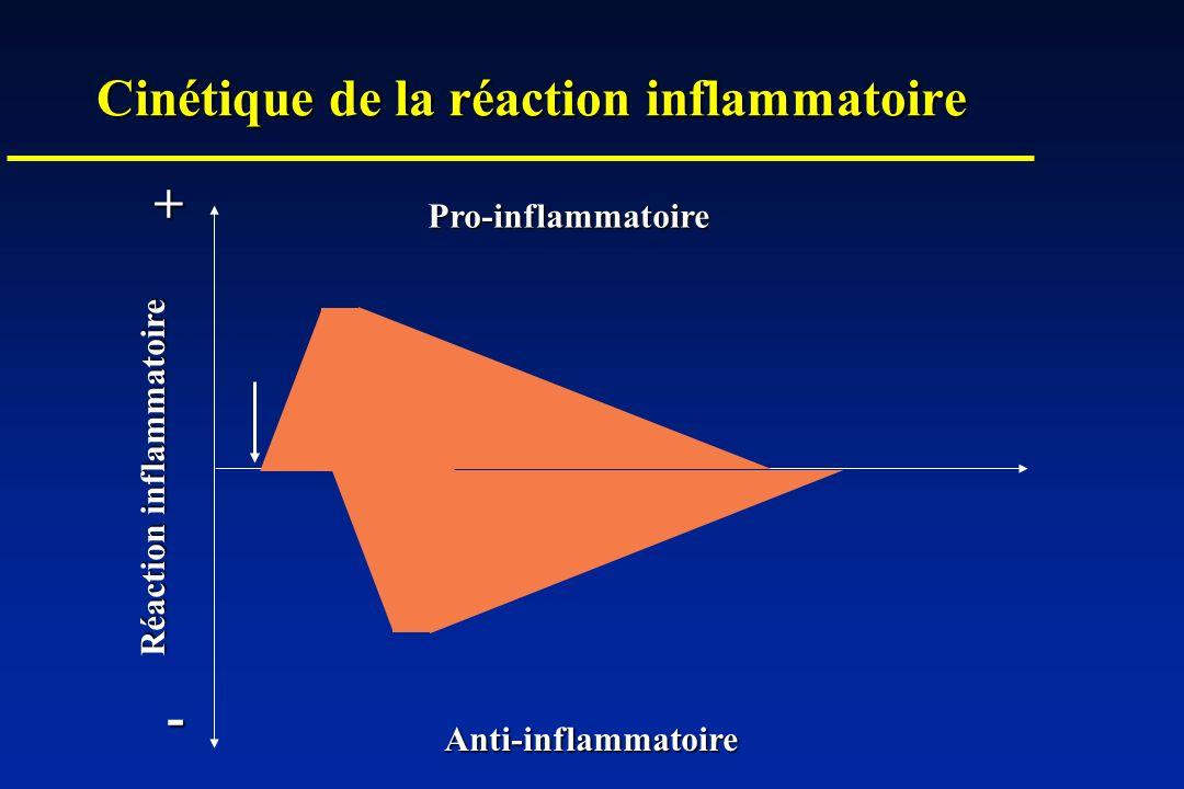 Réaction inflammatoire + - Pro-inflammatoire Anti-inflammatoire Cinétique de la réaction inflammatoire